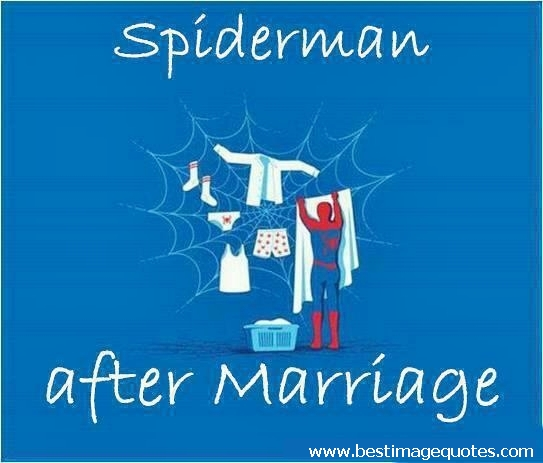 Spiderman after marriage [funny picture]